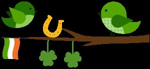 irish bird 3-03